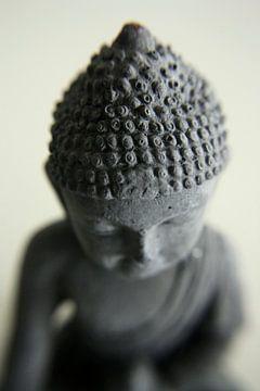 Boeddha van Pamela Fritschij
