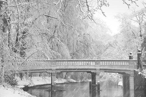 Winter wonderland van Michel Van Zanten