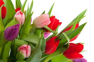 Boeket tulpen op witte achtergrond van Ivonne Wierink