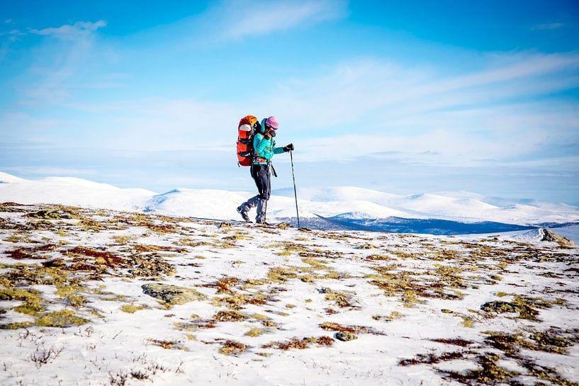 Winter hike in Noorwegen, Dovrefjell van Ruben Dario
