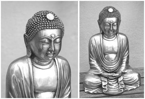 Wijze Boeddha tweeling