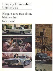 Donnervogel einzigartig'67