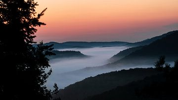 Mistige ochtend in de vallei van Niels Boer