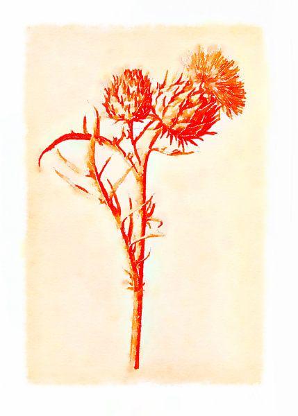 Fleurs dans le style de dessin 1 sur Ariadna de Raadt-Goldberg