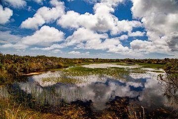 Kaap de Goede Hoop, Zuid-Afrika van