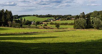 Weiden en bossen in Oost- België van Werner Lerooy