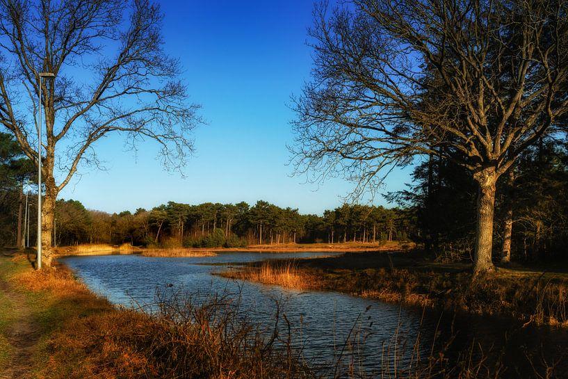 Natuurijsbaan Vlieland in de avondzon van Bart van Dam