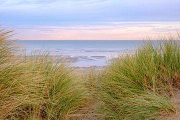 De duinen en het strand van Johan Vanbockryck