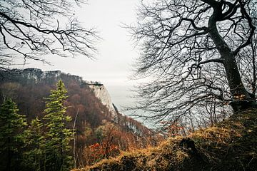 Rugen Island - Königsstuhl Chalk Cliff van Alexander Voss