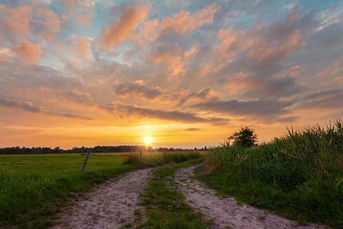Zonsondergang De Onlanden Drenthe