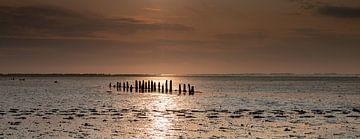 Ondergaande zon op het wad van Alex Dallinga