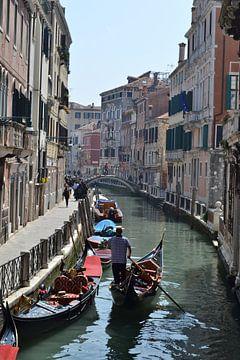 Een pronkjuweel in Venetië Italië van Getty Betlem