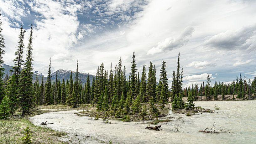 Athabasca River van Floris van Woudenberg