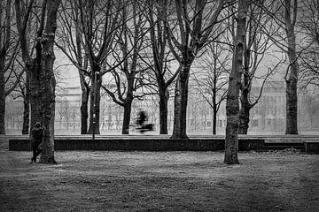 Eenzame Fietser van Marcel van Berkel