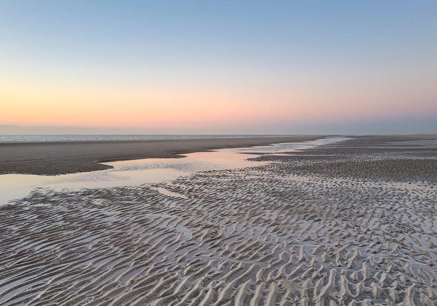 Water to the Ocean van Wad of Wonders