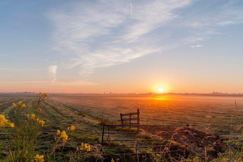 zonsopkomst in de polder van Edwin Sonneveld