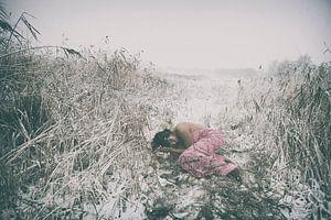 de sneeuwstorm