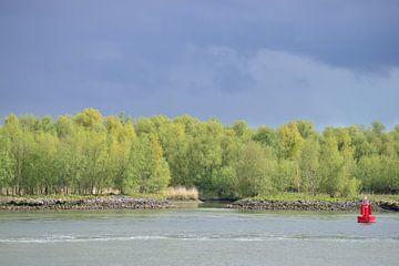 Donkere wolken boven Oude Maas van Annemarie Goudswaard