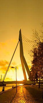Sonnenuntergang Rotterdam von Maarten Visser