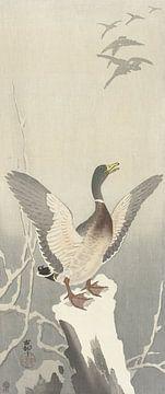 Canard sur un tronc d'arbre enneigé de Ohara Koson