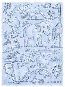 Tiere Wildlife