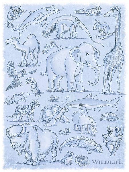 Tiere Wildlife von Stefan Lohr