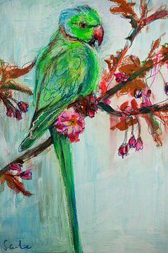 Vogel - Grüner Halsbandsittich