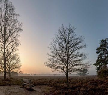 Wintersbankje bij zonsondergang van Ruud Overes