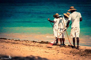 Zeewier opruimen aan het strand van Esther Bax