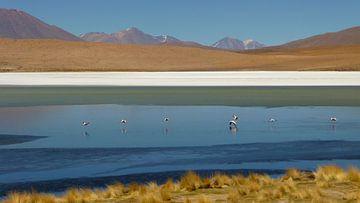 'Gekleurd landschap', Bolivia  van Martine Joanne