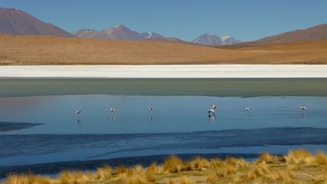 'Gekleurd landschap', Bolivia  sur Martine Joanne