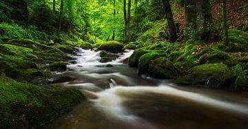 Geroldsau Black Forest von Jos Pannekoek