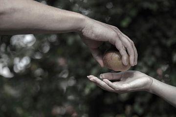 adam en eva de verboden vrucht2 van anne droogsma