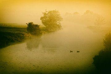 Mist op de rivier van Dieter Ludorf