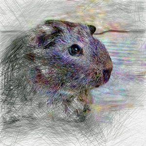 Artistic Animal Guinea Pig