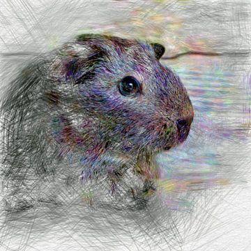 Artistic Animal Guinea Pig von Angelika Möthrath