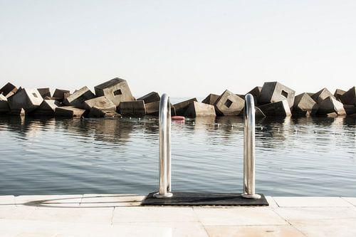 Zwemmen in Barcelona van Maurice Moeliker