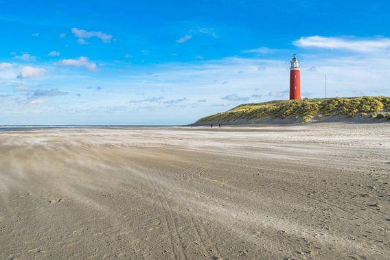 Strand Texel van Dick Hooijschuur