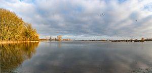 Hoog waterIjssel bij Zutphen. van Marcel Pietersen