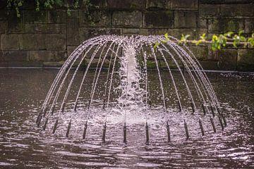 Waterfontein van C.T. Lam