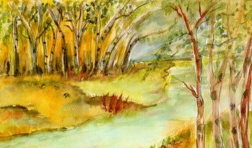 Birken am Ufer von Claudia Gründler