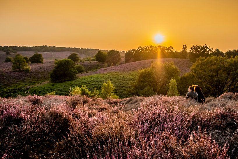 Ondergaande zon op de Veluwe van Marcel Krijgsman
