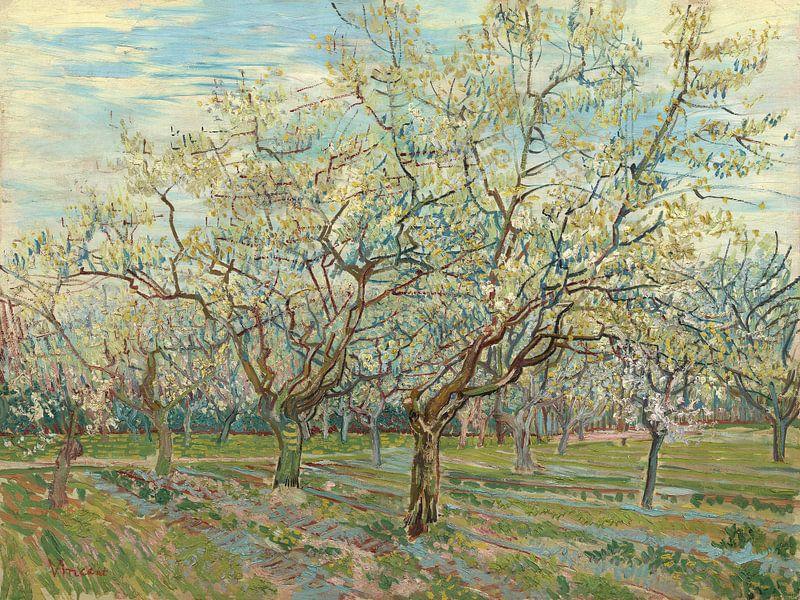 White Orchid - Vincent van Gogh  van Marieke de Koning