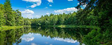 See mit Wald und blauem Himmel mit weißen Wolken von Hans-Heinrich Runge