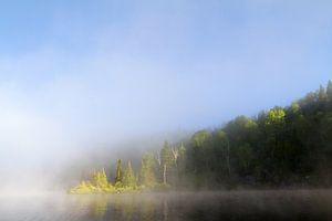 Boreale bossen van Renald Bourque