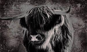 Fine Art Porträt schottischen Highlander in schwarz und weiß