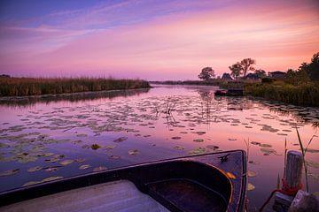 Nederlands landschap in ochtendglorie. van Marleen Kuijpers