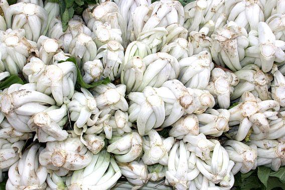 Witte groenten