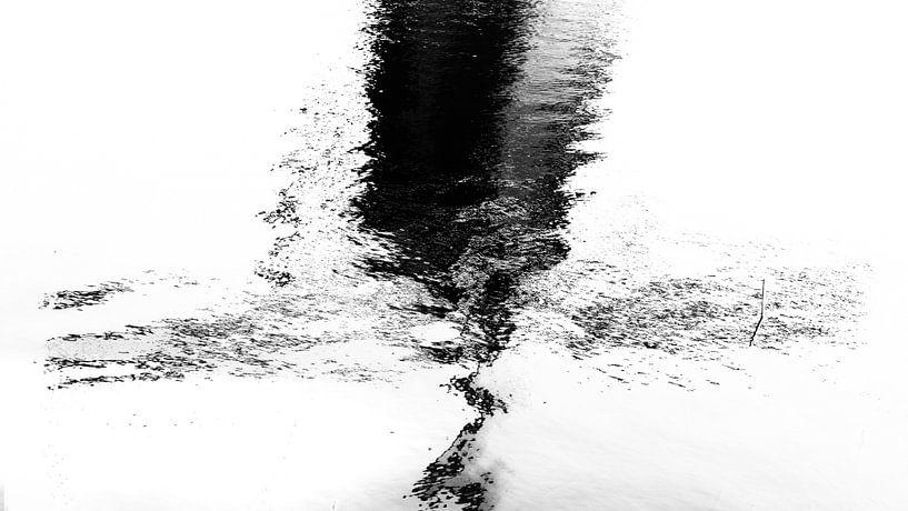 Reflection van HANS VAN DAM