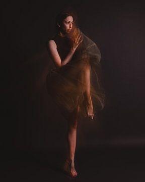 Ballerina in Bewegung 03 von FotoDennis.com